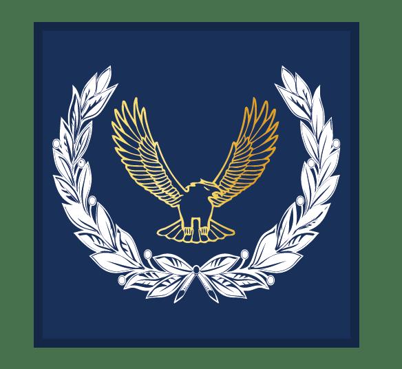 Master_Air_Cadet